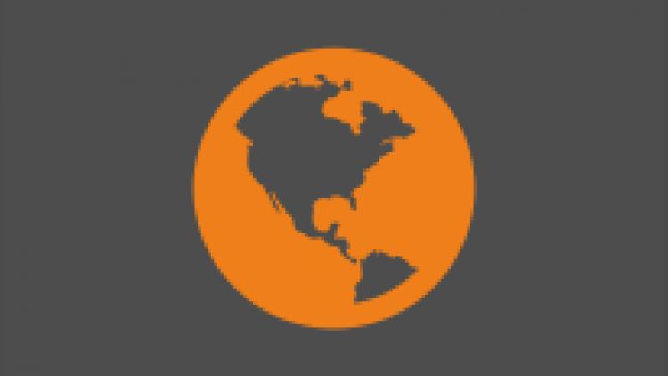 International Pallet Distribution